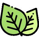 Sklep zielarsko medyczny - Droga do Zdrowia